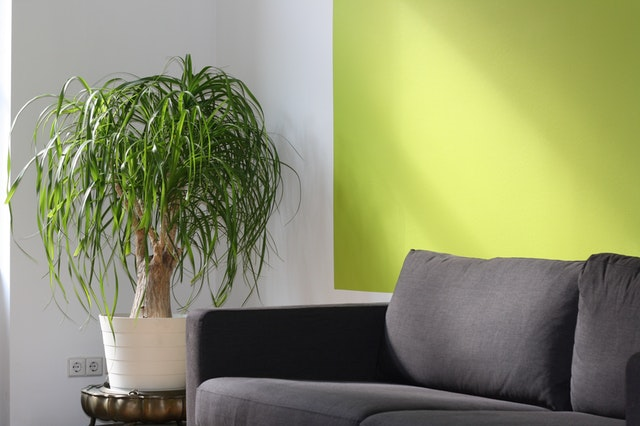 Your Home Need A Facelift Try These Home Improvement Ideas!